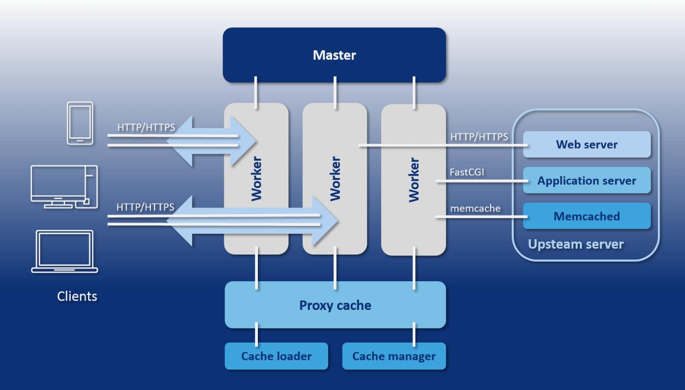 NGINX vs  Apache: A web server comparison - 1&1 IONOS