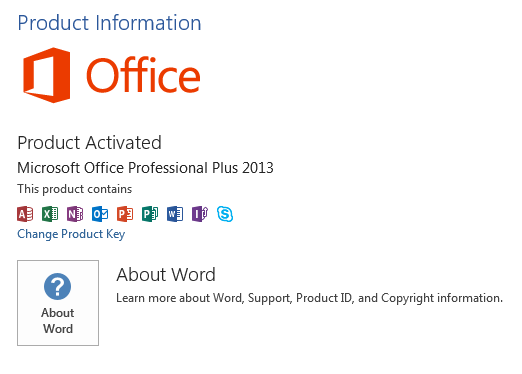Screenshot Of The Product Information Overview In Microsoft Office