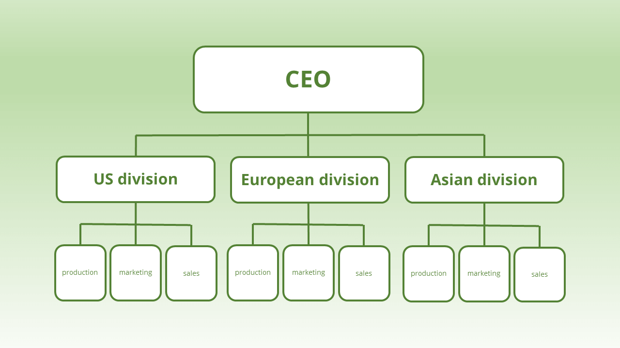 divisional organizational structure examples